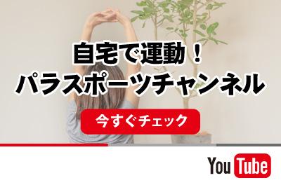 ユーチューブ・チャンネル